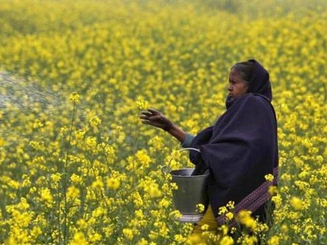 The SCbench said there was no legal provision to evict the farmers as the eviction conditions laid down in the Punjab Security of Land Tenure Act 1953 and Punjab Tenancy Act 1887 do not include a tenant whose lease has expired.