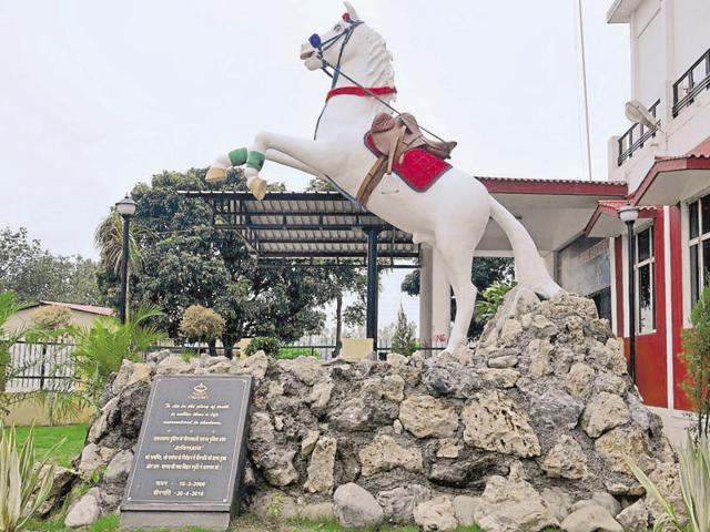 Shaktiman horse,Uttarakhand police horse,Harish Rawat