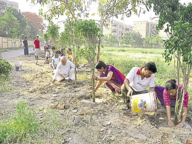 Environmental activists have said that officials should focus more on the survival of the saplings planted, rather than just planting them in large numbers.