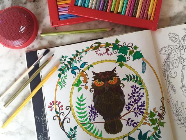 adult colouring books,indu harikumar,sujaya batra