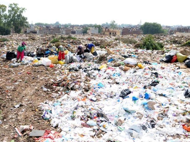 Faring poorly in solid-waste management, Chandigarh, Delhi and Shimla sport common sights of garbage dumped in the open,