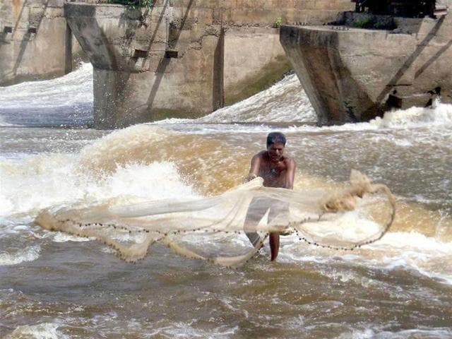 A fisherman throws his fishing net to catch fishes in Krishna river. A flood alert has been issued in many villages of two border districts of Karnataka after excess rain water was released from Maharashtra into the Krishna river.