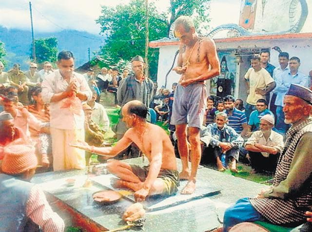 An official pleads before 'Peshwa', believed to be an incarnation of 'Nag Devta', in Uttarkashi. HT photo