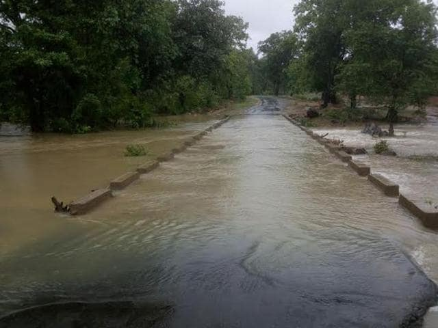 The region has recorded surplus rains this season, said sources.(HT PHOTO)
