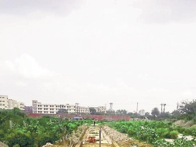 Greater Noida,cycle,greenery