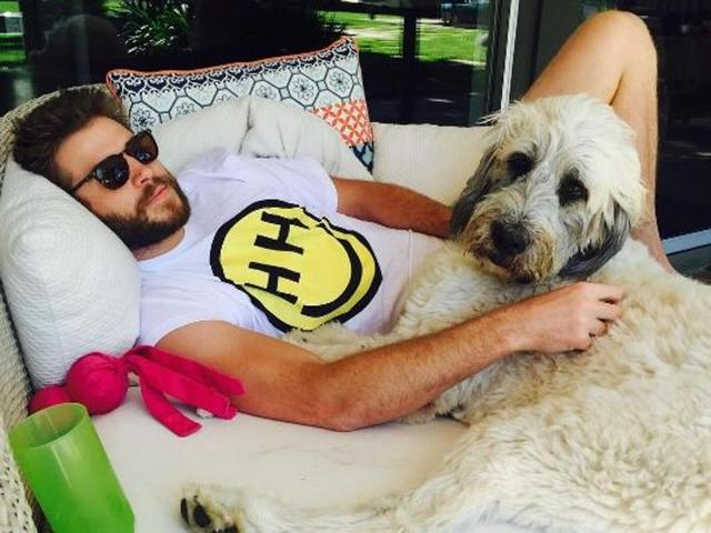 Miley Cyrus makes it official with Liam Hemsworth through Instagram pic | music | Hindustan Times