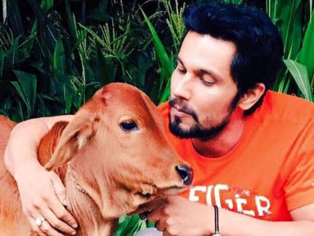 In a social media post that is rare coming from a celebrity, Bollywood actor Randeep Hooda shared pictures of himself with a 15-day-old calf and a few cows, announcing that they are up for sale.