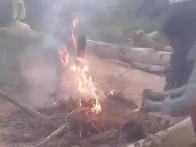 Hyderabad,Puppies burnt alive,Animal cruelty