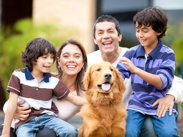 A pet dog can reduce the number of dysfunctional interactions between the parents and the child, and improve functioning within the family as a whole.