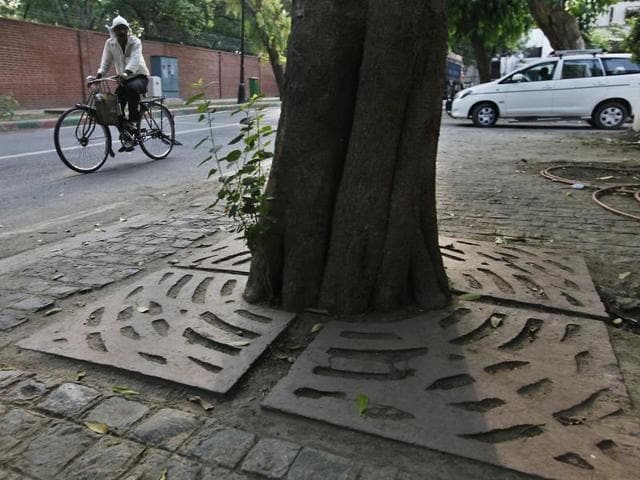 Plantation drives in Delhi