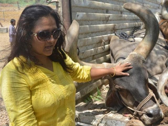 Neha Patel during a recent raid on highway near Vadodara. This 38-year-old MBAgraduate is Gujarat's only female 'gau rakshak'.