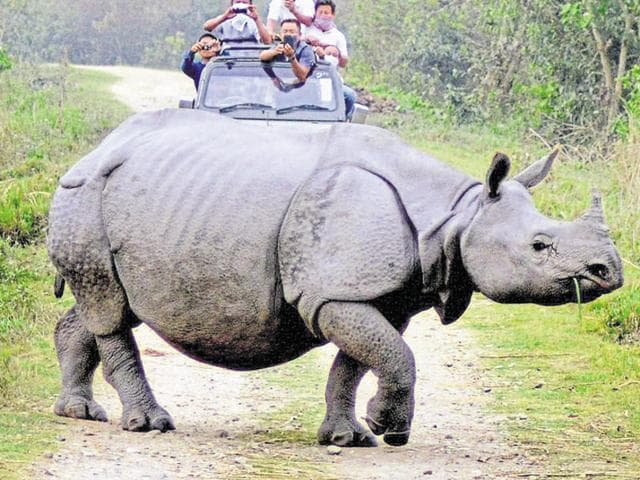 A rhino carcass was recovered from the flooded Kaziranga National Park in Assam on Monday, two days after another rhino was found dead.