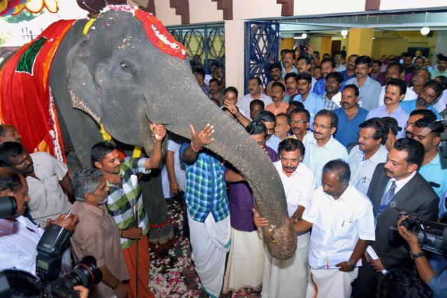 Dakshayani,Guinness Book of World of Records,oldest surviving Asian elephant in captivity