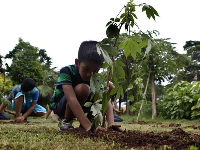 The different arms of the Delhi Municipal Corporation is delivering saplings to families or naming them after residents in a bid to popularise their annual plantation drive.