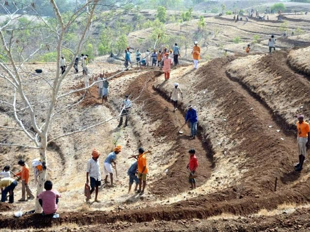 Eight out of 10 claims for land title by forest dwellers under the Forest Rights Act were rejected last year.(HT File Photo/Representative image)