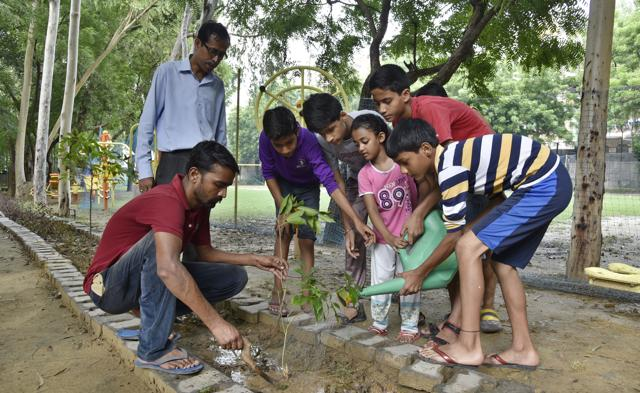Children are being encouraged to take care of the trees planted this year.