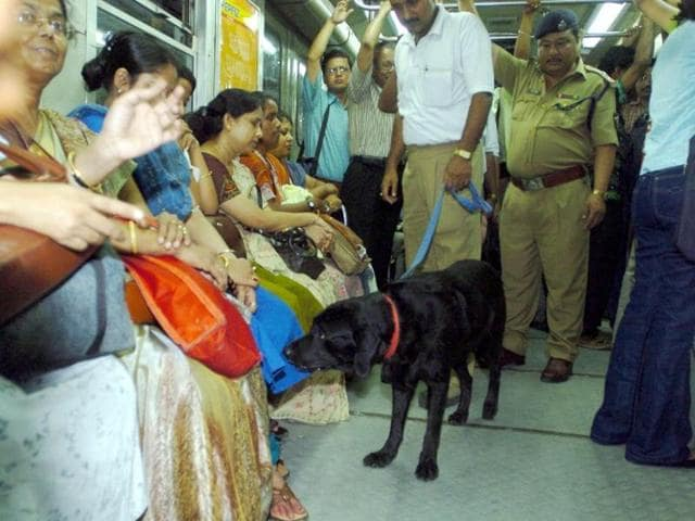 A police sniffer dog inspects commuters as they travel on an underground train in Kolkata.