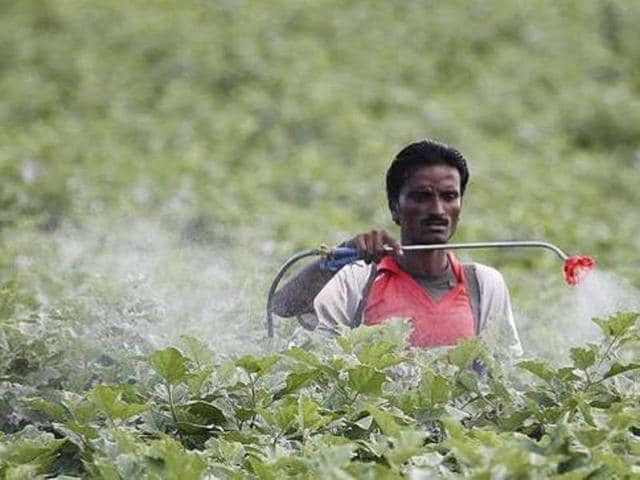 Before the implementation of this rule, the agriculture department used to release 7 to 8 licences every month in both categories, it is learnt.