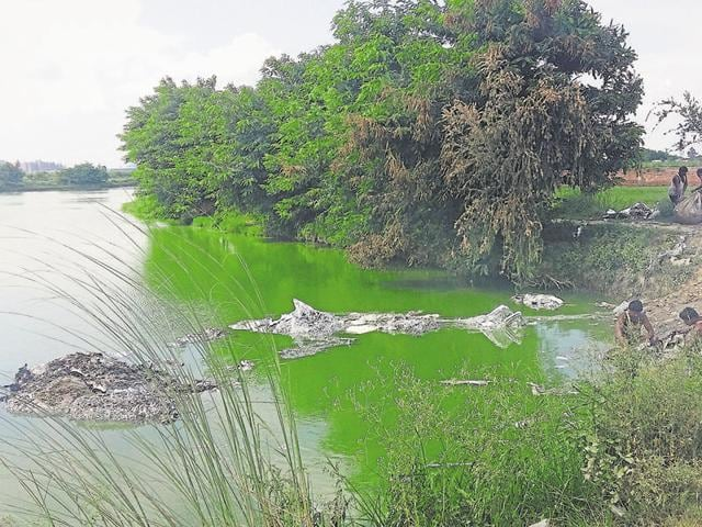 Villagers said the water turned green and emanated a foul odour after the waste was dumped.