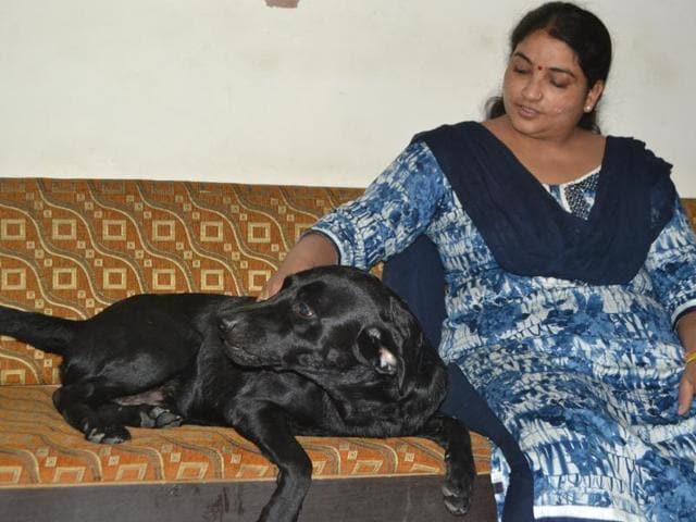 Wife of RSKatheria, Dr Mridula with Kalu, the missing Labrador that was recovered from Lawyers' Colony in Agra on Saturday