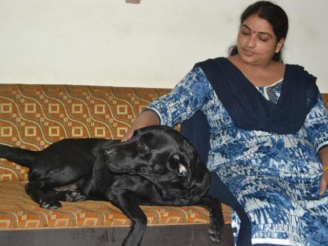 Agra MP's missing dog found,Agra MP,Ram shankar Katheria