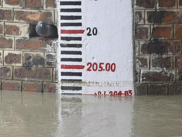A river gauge scale shows Yamuna's water level at 204.83 metre in Delhi on August 14.