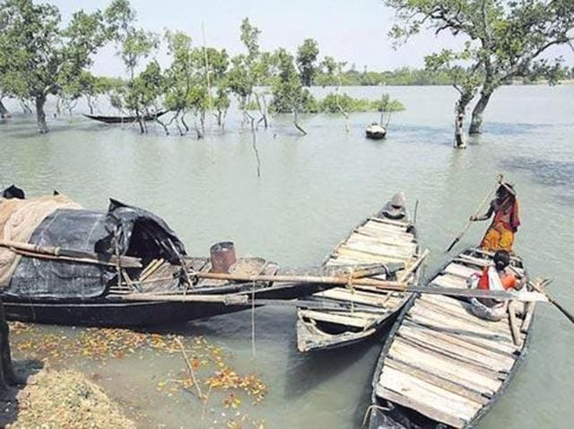 The survivors and the bodies were found near Kendo island of the Sunderbans on Tuesday, Sunderban development minister Manturam Pakhiram, who is camping in the area, said.