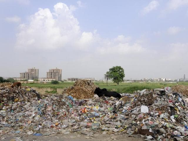 In the absence of a proper waste diposal mechanism, authorities in Noida and Greater Noida have been dumping solid waste in open spaces.
