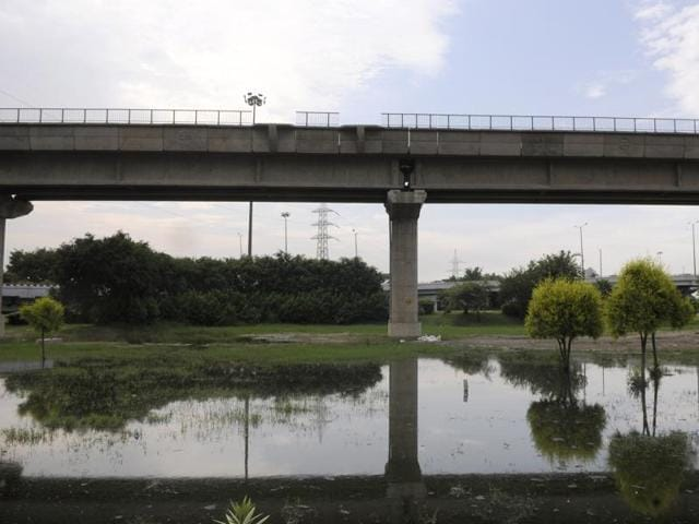 Noida Residents' Welfare Associations,Noida Authority,Mosquito breeding post rains