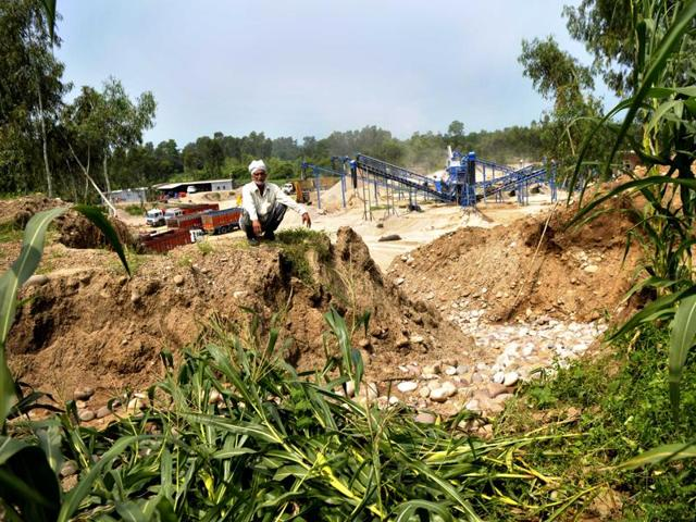 Kesar Singh sits over his devastated field that caved in with his standing maize crop last month at Kanjupeer village in Hajipur sub-tehsil of Hoshiarpur district. The farm is on the edge of an illegal quarry in the background, where a stone crusher operates.