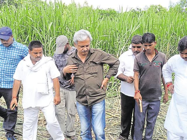 Forest officials and wildlife experts track the tiger's pugmarks during a combing operation in Lakhimpur Kheri, Uttar Pradesh.