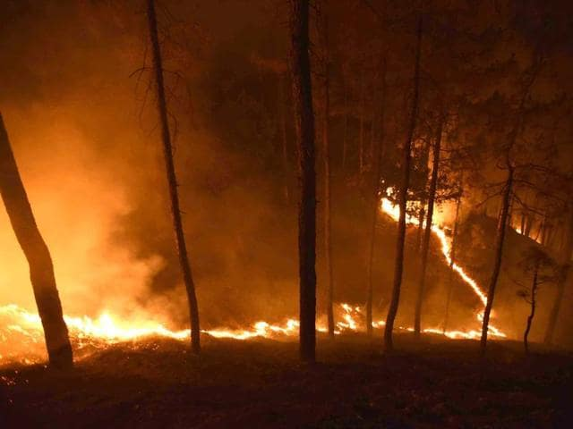 Looming disaster:The forest fire in Uttarakhand in May 2016, like the increasingly frequent floods, are warning signals of climate change.