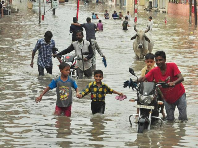 MLA Som Parkash (in T-shirt with blue and white vertical stripes) and others on a flooded street of Phagwara in Jalandhar district on Saturday.