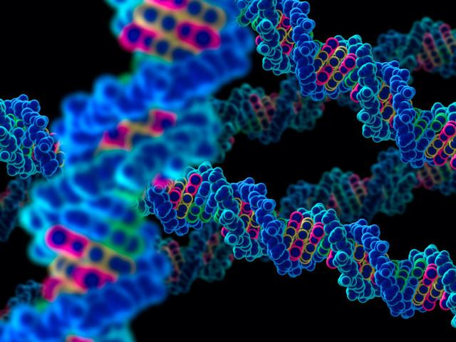 Scientists find new way to boost gene-editing tool efficiency