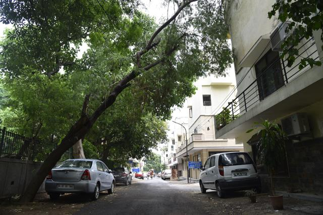 Sarita Vihar, East of Kailash, Defence Colony, Mandakini Enclave and Sheikh Sarai are some of the south Delhi colonies where overgrown trees are giving a hard time to residents.