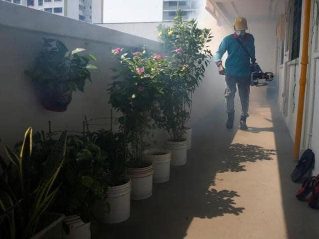 Singapore,Zika virus,mass spraying
