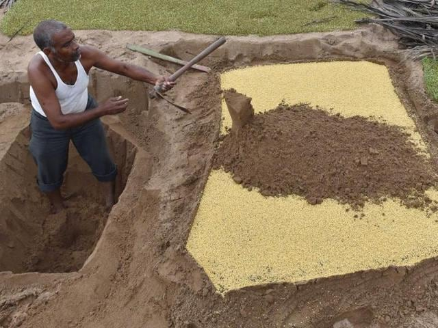 Sand to soil conversion,Sand to soil,CHinese scientists