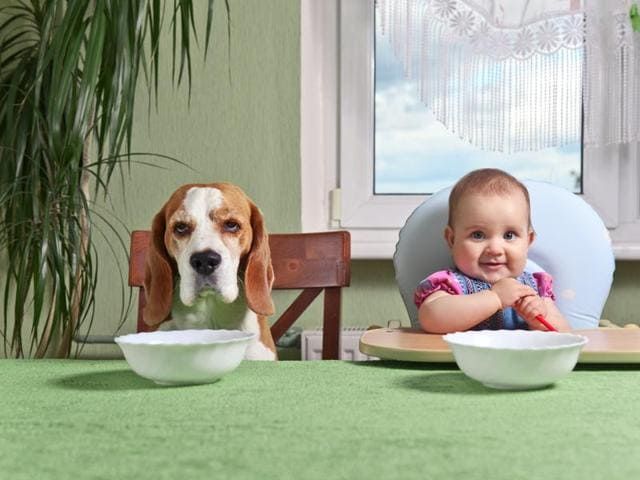 Baby keenly observe what people around them are eating. Parents, be wary!