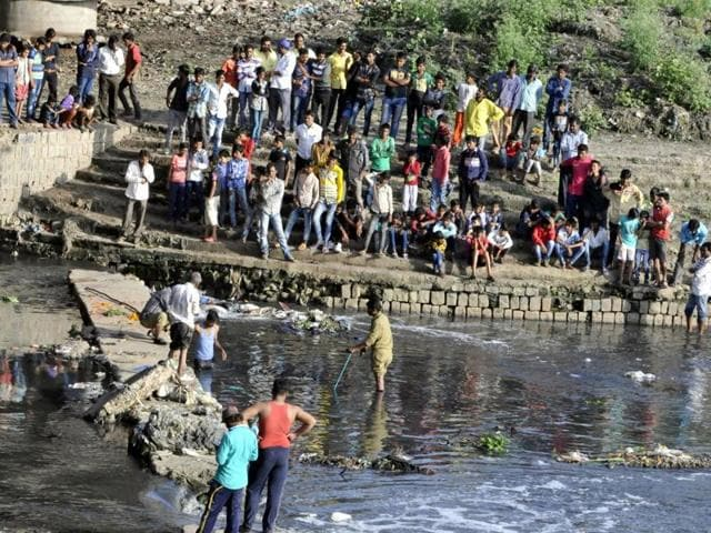 Zoo authority members search for the baby alligator that was spotted in Khan river in Indore on Monday.