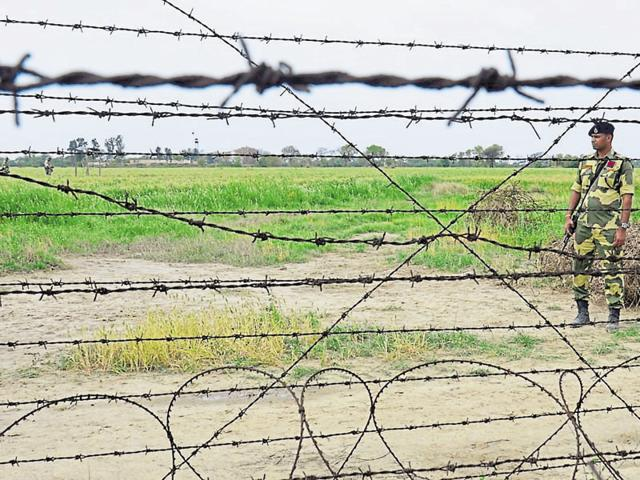 A field under the watch of a BSF jawan near the border in Amritsar district.