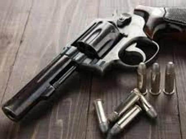 Gun Dixie Gun