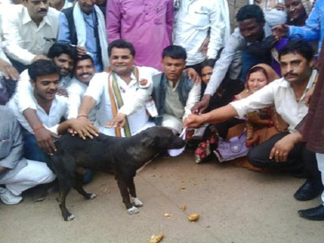 Members of a panchayat in Madhya Pradesh's Panna district showed their anger against the district magistrate by handing over the memorandum to a dog