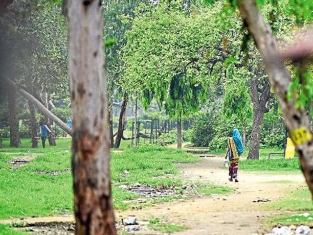 Due to lack of toilets in rural areas, villagers go out in the open to defecate.