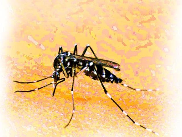 Zika,Virus,Travellers