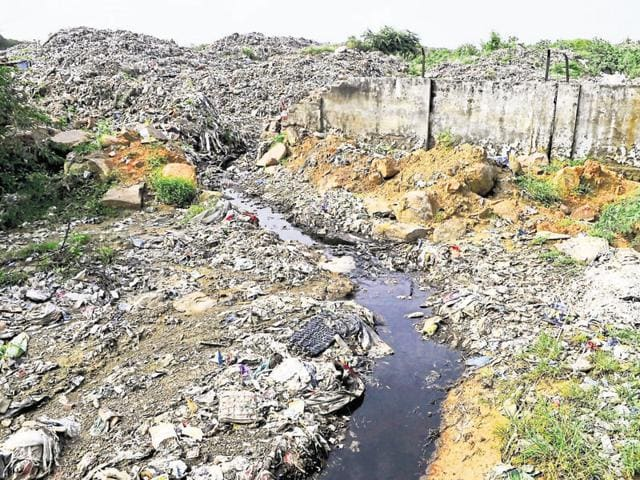 The villagers say the foul odour from heaps of rotting garbage and animal carcasses is making life tough for them.