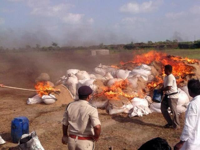 Mandsaur excise department has burnt 4,237 quintals of poppy husk in the last one week.