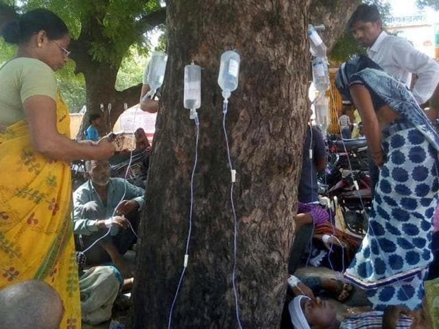 Hard-pressed medical staff have turned to two neem trees on the campus to nurse back to health a flood of fever-stricken patients.