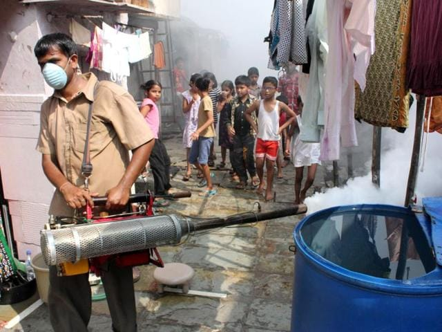 In slums, mosquito-breeding sites were found mainly in drums outside their shanties.
