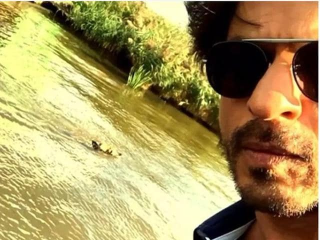 Yes, that's the dog SRK is talking about.