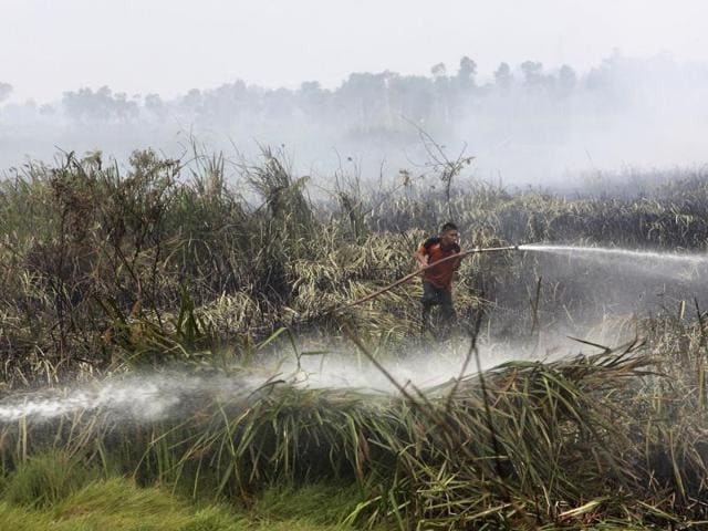In this 2015 file photo, a fireman sprays water to extinguish wildfire on a peatland field in Ogan Ilir, South Sumatra, Indonesia. Indonesian forest fires that choked a swath of Southeast Asia with a smoky haze for weeks in 2015 may have caused more than 100,000 premature deaths.